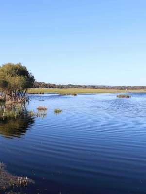 Lake Marshall is a seasonal surface expression of the Gnangara Water Mound
